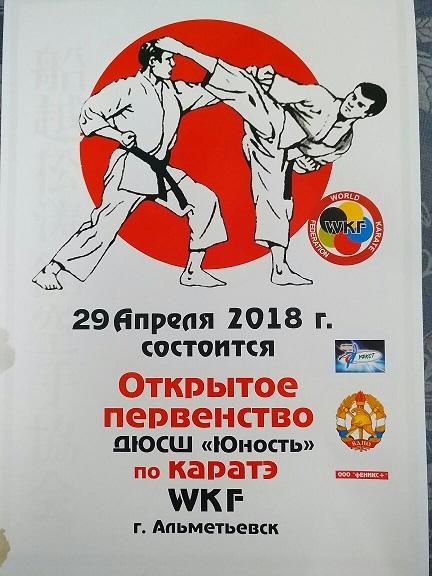 Первенство по каратэ в городе Альметьевске