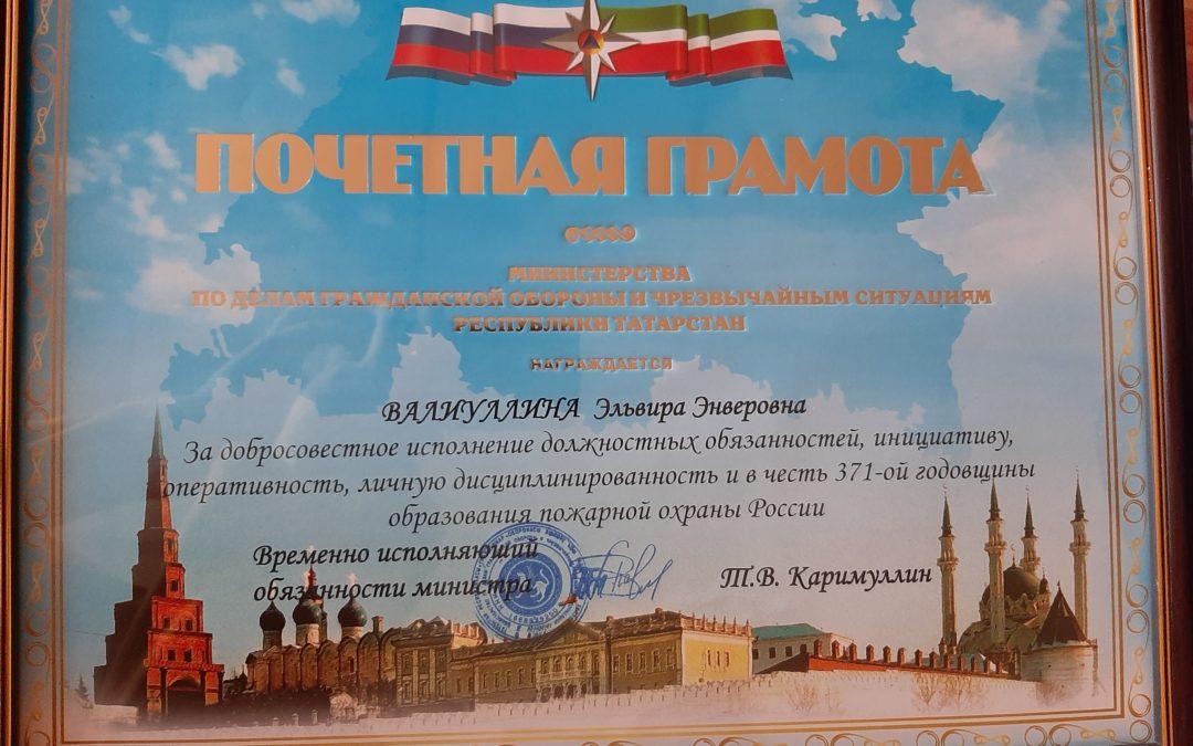 Награждение сотрудников ТРО ВДПО РТ